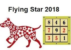 летящие звезды 2018